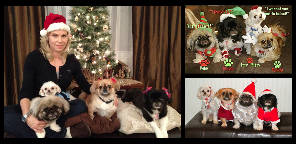 ava aston and her doggies dressed up for christmas