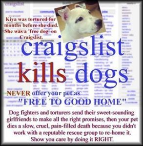 Pets Do not Belong on Craigslist - Ever!