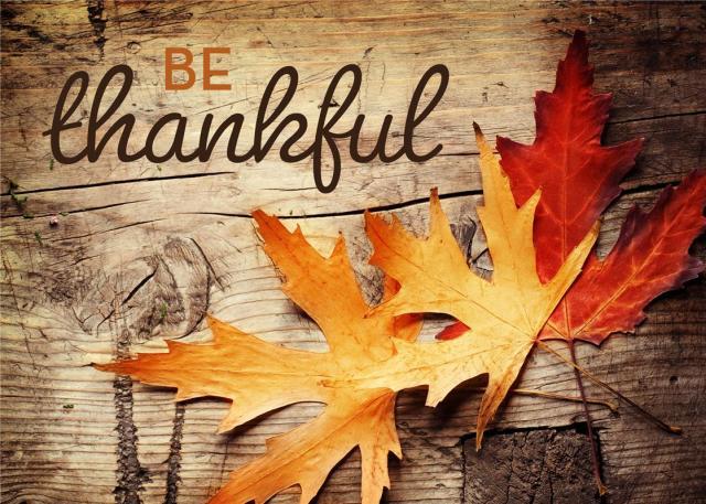 thanksgiving happy holiday black friday blog ava aston gift